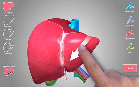 Surgical Anatomy Of The Liver Apk Download Free Medical App For