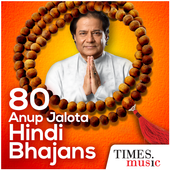 80 Anup Jalota Hindi Bhajans icon