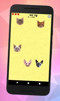 Flying cats apk screenshot