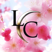 Lisa Christiansen Companies icon