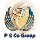 P & Co FasTrack Ltd icon