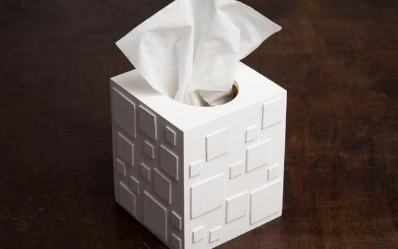 tissue box project poster