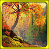 Autumn Leaf Live Wallpapers icon