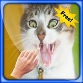 Puppy Cats Live Wallpapers icon