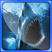 Shark Great Live Wallpapers icon