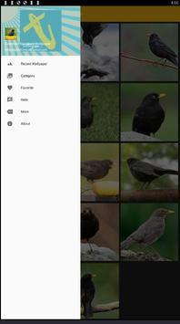 Common Blackbird Wallpaper screenshot 1