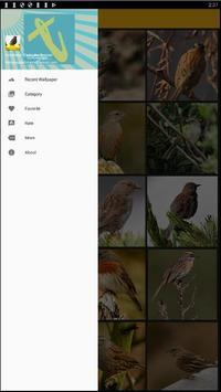 Accentor Birds Wallpaper screenshot 2