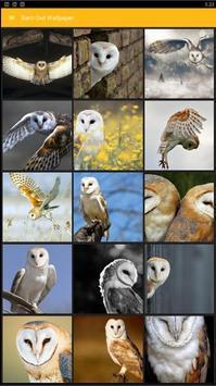Barn Owl Birds Wallpaper poster