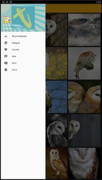 Barn Owl Birds Wallpaper screenshot 1
