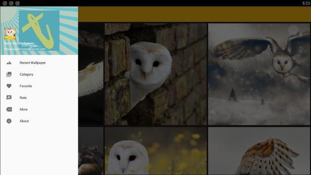 Barn Owl Birds Wallpaper screenshot 8