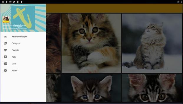Maine Coon Cat Wallpaper screenshot 5