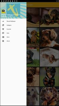 Miniature Dachshund Dog Wallpaper screenshot 2