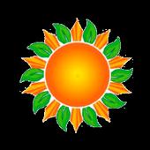 Catimor Solar icon
