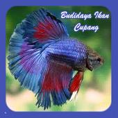 Budidaya Ikan Cupang icon