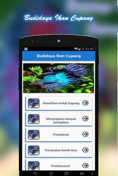 Budidaya Ikan Cupang poster