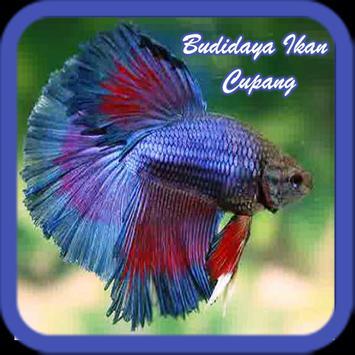 Budidaya Ikan Cupang screenshot 3