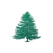 Evergreen Share icon