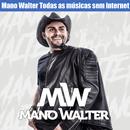 Mano Walter Todas as músicas sem internet 2019 APK