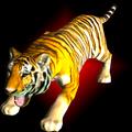 Forest Animals: Wild Cat Tiger
