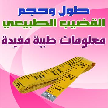 طول وحجم القضيب الطبيعي poster