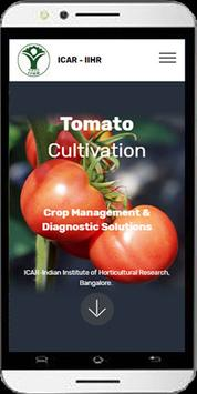 Tomato Cultivation poster
