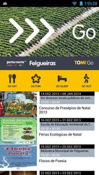 TPNP TOMI Go Felgueiras poster