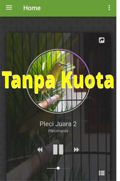 Suara Pleci Juara apk screenshot