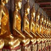 Everyday Buddha Quotes icon