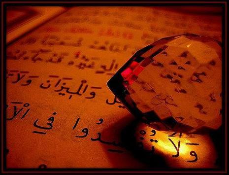 Quran the Holy Book apk screenshot