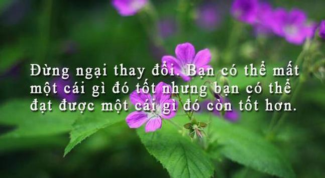 Hạt Giống Tâm Hồn - Danh Ngôn poster