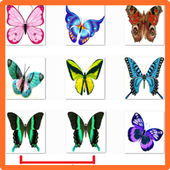 Top Butterflies Matching Games icon