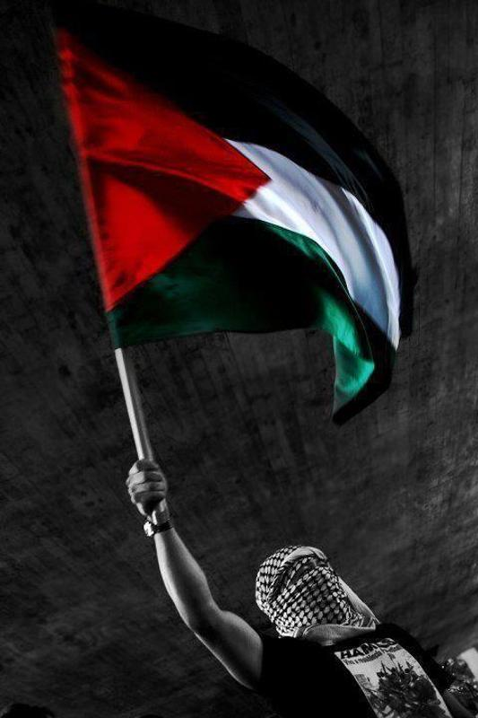 Palestine wallpapers photos hd for android apk download - Palestine flag wallpaper hd ...