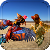 Farm Rooster Fight 3D Action icon