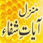 Ayat-e-Shifa icon