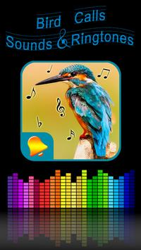 Bird Calls, Sounds & Ringtones poster