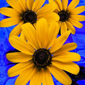 Beautiful flowers on blue icon