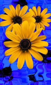 Beautiful flowers on blue apk screenshot
