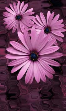 Beautiful flowers on violet screenshot 1