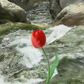 Beautiful tulip and brook icon