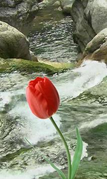 Beautiful tulip and brook poster