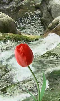 Beautiful tulip and brook screenshot 1