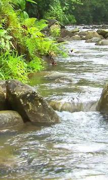 Movement mountain river screenshot 1