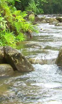 Movement mountain river screenshot 2
