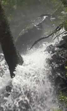 Stormy forest waterfall poster
