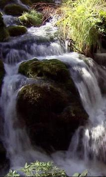 Water and stone in the green poster