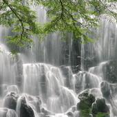 Wonderful wall of waterfall icon