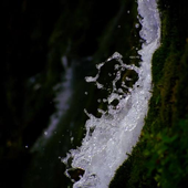The magic ofwater and greenery icon