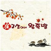 최규삼이네왕족발 icon