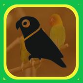 Kumpulan Masteran Kicau Burung Terbaru icon