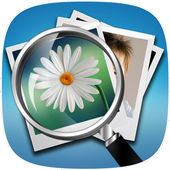Reverse Image Search icon